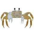 Beach Crab vector image
