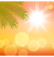 Sunny background with palm leaves vector image