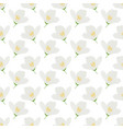 white jasmine flowers seamless pattern for vector image
