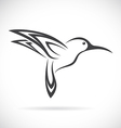Humming birds vector image