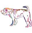 Colorful decorative standing portrait of shar pei vector image