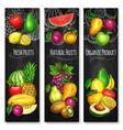 tropical and garden fruit chalkboard banner set vector image