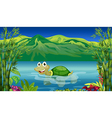 A turtle in the sea vector image vector image