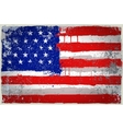 color USA paint flag vector image