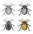 colorado beetle icon in cartoon style isolated on vector image
