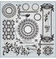 beautiful ornamental pattern on gray background vector image