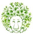 floral decorative ornament lion vector image