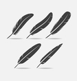 Feather Black Icon vector image