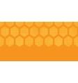 Abstract honey yellow honeycomb fabric textured vector image