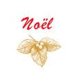 noel french christmas lettering vector image