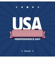 USA Independence day card vector image