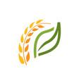 wheat spike symbol vector image