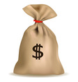 sack of money vector image vector image