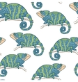 Seamless wallpaper with chameleon isolated on vector image