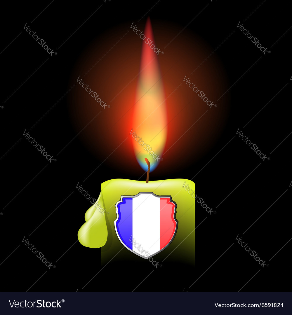 Burning candle and shield vector