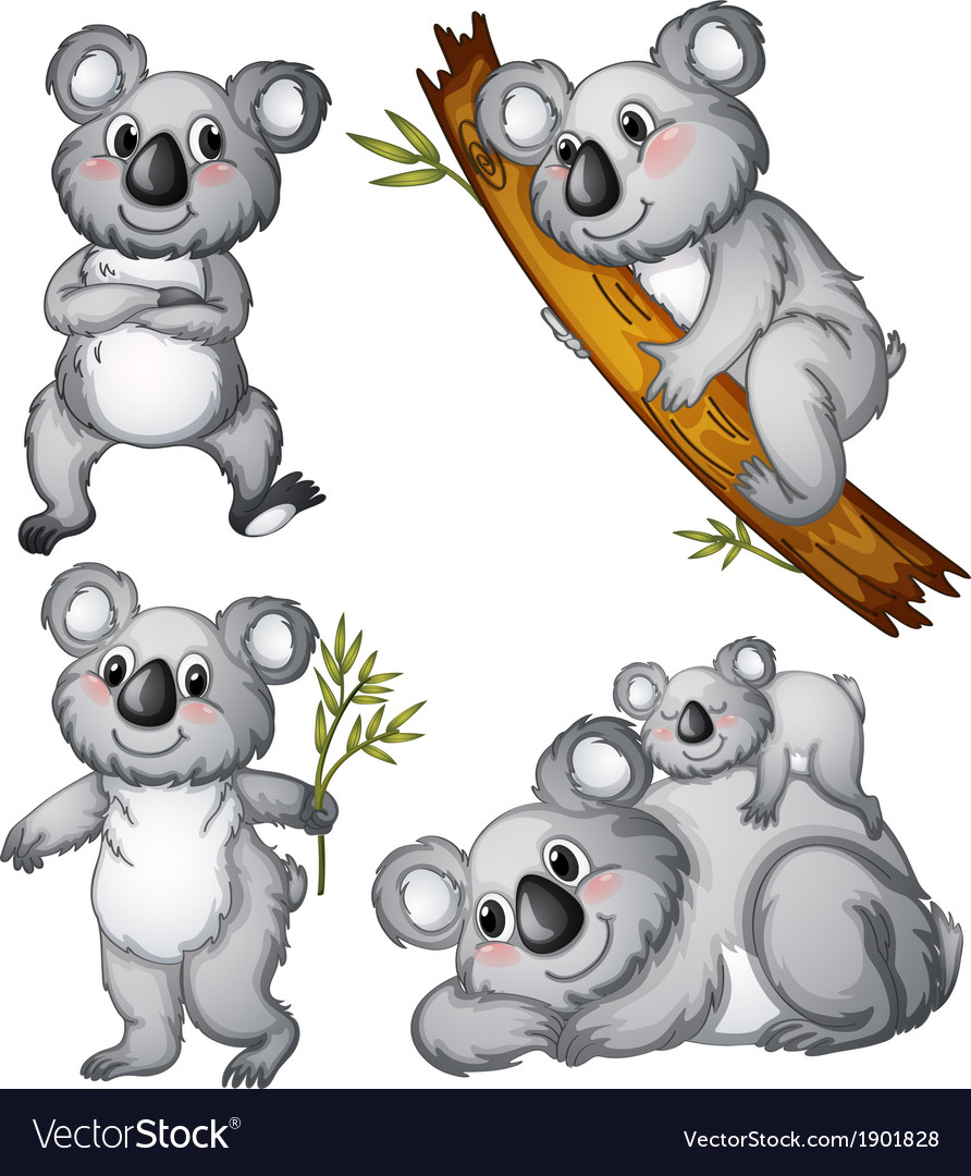 A group of koalas vector