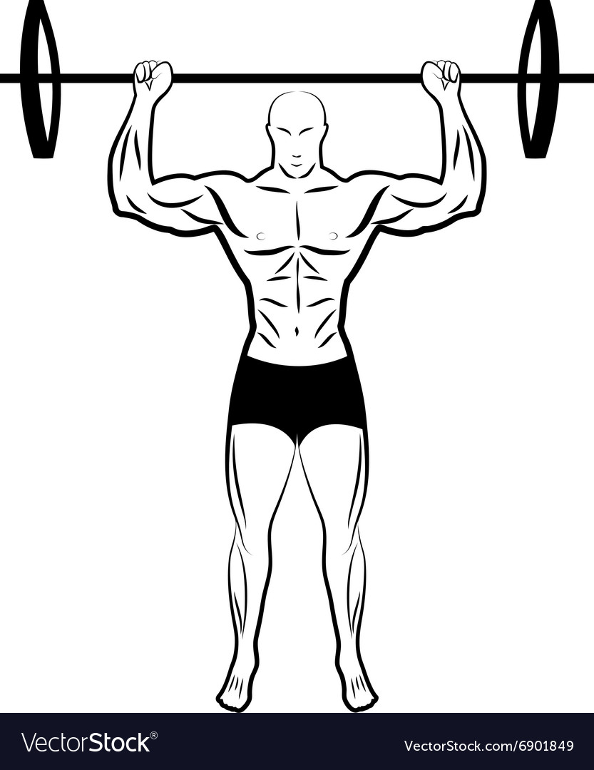 A man lifting a barbell athlete vector