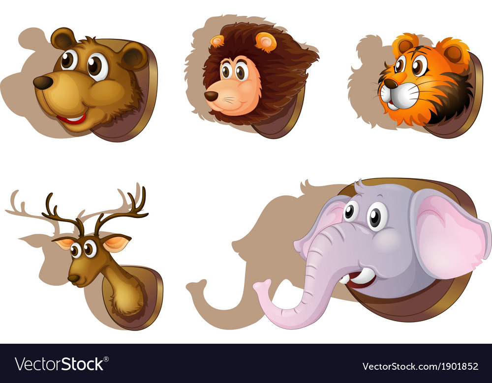 Five stuffed heads of animals vector
