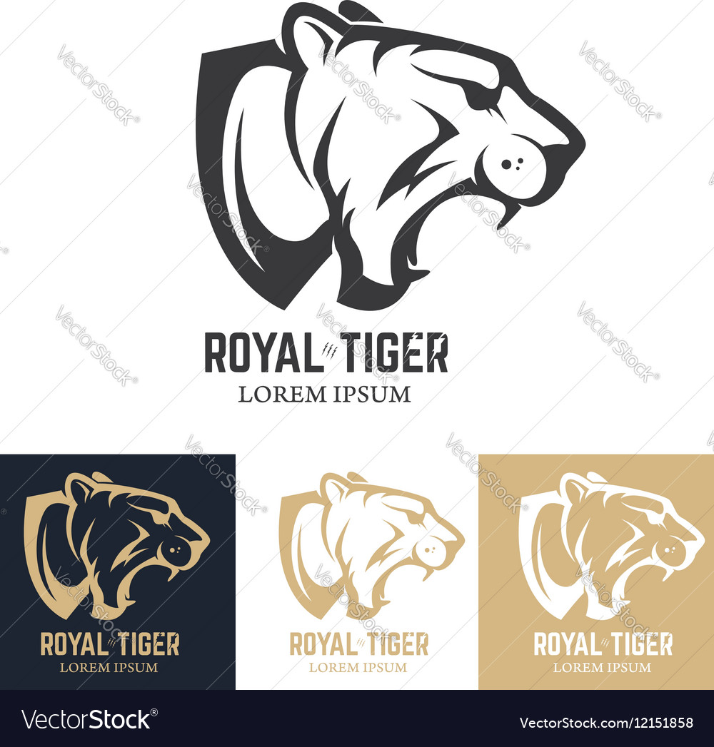 Set of the tiger heads sport team mascot design vector