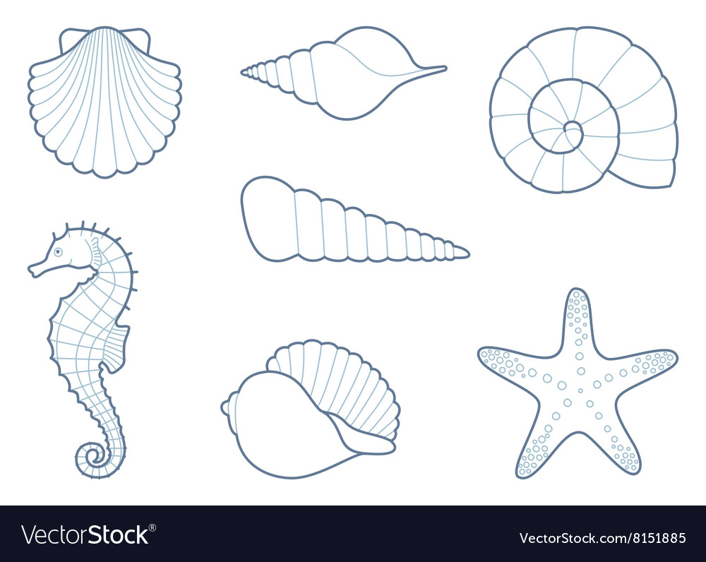 Outlines of sea creatures vector