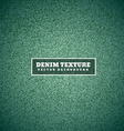 green denim texture vector image