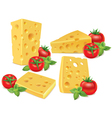 Cheese cherry tomatoes basil vector image