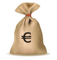 money bag with euro vector vector image vector image