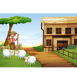An old man at the farm with three sheeps vector image