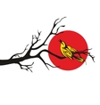 Golden Oriole perched on a branch flat vector image