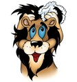 Washing Lion vector image vector image