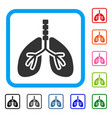 respiratory system framed icon vector image