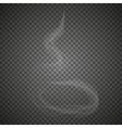 Delicate white cigarette smoke waves vector image