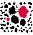 paint brush spots vector image
