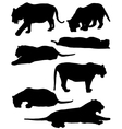 Collection of silhouettes of tigers vector image vector image