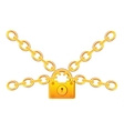 Gold lock in chain vector image