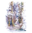 Watercolor winter forest with trees vector image