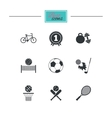 Sport games fitness icon Football basketball vector image