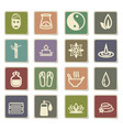 beauty and spa icon set vector image