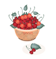 A Brown Basket of Fresh Red Cherries vector image vector image