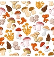 Edible mushrooms seamless pattern background vector image