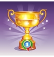 Cartoon of a golden cup with a medal vector image