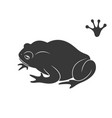earth frog isolated frog on white background vector image