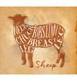 sheep lamb cutting scheme craft vector image vector image
