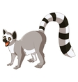 Cartoon smiling Lemur vector image