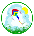 Colorful kite on summer background vector image