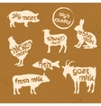 Set of animals silhouette and text inside them vector image