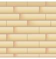 Wall with masonry vector image