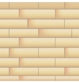 Wall with masonry vector image