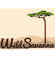 Wild Savanna with tree in the field vector image