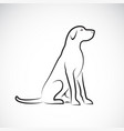 a labrador retriever dog on a white background vector image